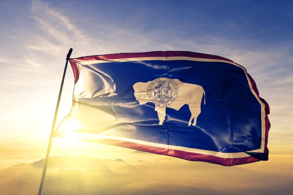 LLC Delaware Wyoming
